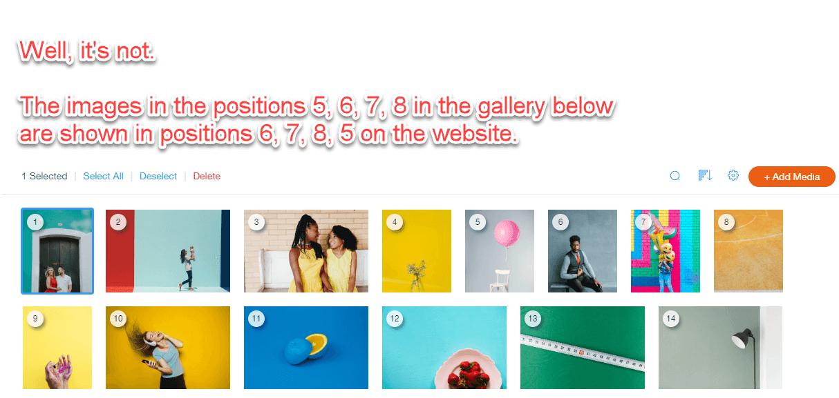 Wix gallery issues